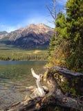 Lac pyramid Images libres de droits