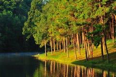 Lac rêveur Photographie stock