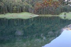 Lac reculé Images libres de droits