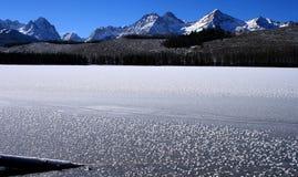 Lac redfish en hiver images stock