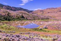 Lac repéré, Colombie-Britannique Photos libres de droits