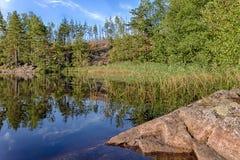 Lac rocheux de forêt Image stock