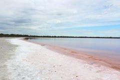 Lac rose Image libre de droits