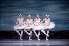 Lac royal russe swan de perfome de ballet Image stock