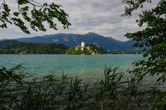 Lac saigné avec l'église de St Marys de l'hypothèse sur l'île, saignée, Slovénie, l'Europe photo libre de droits