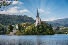 Lac saigné avec l'île en Slovénie photographie stock libre de droits
