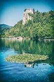 Lac saigné avec les waterlilies et le château reflété photo libre de droits