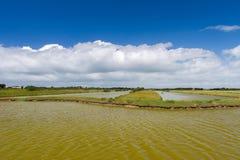 Lac salt à l'île française d'Oleron image stock
