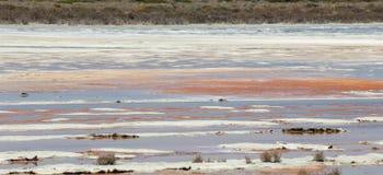 Lac salt avec le gisement de l'eau et de sel Images libres de droits