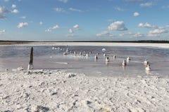 Lac salt L'endroit parfait pour qu'une personne reçoive la santé Images stock