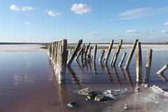 Lac salt L'endroit parfait pour qu'une personne reçoive la santé Photo libre de droits