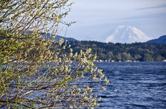 Lac Sammamish avec plus pluvieux à l'arrière-plan Photographie stock libre de droits