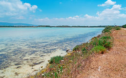 Lac sardinia Photographie stock