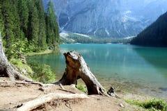 Lac sauvage images libres de droits