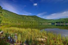 Lac Sfânta Ana - rivage de lac avec le roseau photographie stock