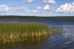 Lac silencieux Photo libre de droits