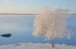 Lac Siljan dans Rättvik, Suède Photo libre de droits