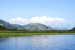 Lac Skadar Images stock