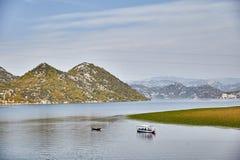Lac Skadar Stationnement national montenegro Été photos stock