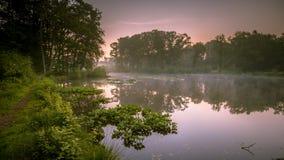 Lac spring dans la réserve naturelle Photos stock