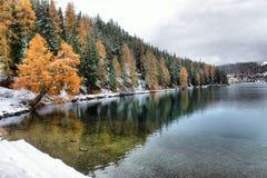 Lac St Moritz pendant l'automne Photos libres de droits