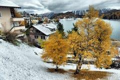 Lac St Moritz pendant l'automne Image stock