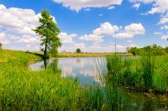 Lac summer Photos stock