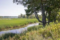 Lac summer dans Ontario, PEC, Canada images libres de droits