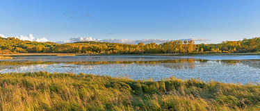 Lac Sun et bouleau blanc pendant l'automne photo libre de droits