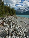 Lac supérieur Kananaskis Photos libres de droits
