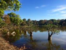 Lac sur l'au sol de camping la Floride Images stock