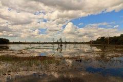 Lac sur le chemin latéral à Neak Pean Images stock