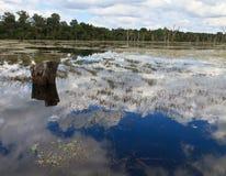 Lac sur le chemin latéral à Neak Pean Photographie stock libre de droits