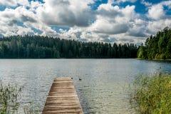 Lac surrownded par des forêts Photos libres de droits