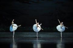 Lac swan de Fée-ballet de trois cygnes Photo stock