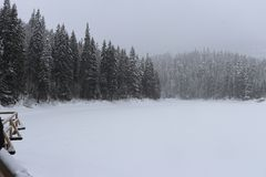 Lac Synevir winter photographie stock