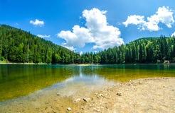 Lac Synevyr Photo libre de droits