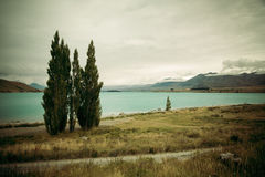 Lac Tekapo Photo stock
