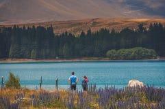 Lac Tekapo : Les eaux bleues avec des scènes paisibles photos libres de droits