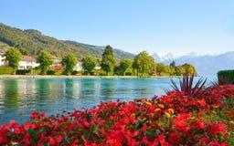 Lac Thun avec la montagne de Jungfrau en automne sur le ciel bleu clair, S Photographie stock libre de droits