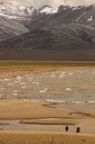 Lac Tibet-1 Namtso Photographie stock libre de droits