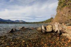 Lac tombé leaf Image stock