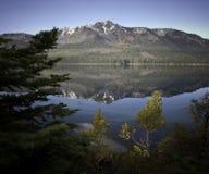 Lac tombé leaf Images libres de droits