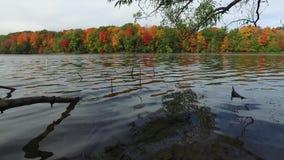 Lac Toronto Richmond Hill dam banque de vidéos