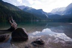 Lac Tovel dans les dolomites de Brenta Photos libres de droits