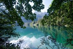 Lac Tovel dans les dolomites de Brenta Photographie stock libre de droits