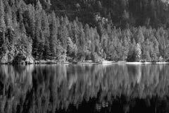 Lac Tovel dans les dolomites de Brenta Image stock