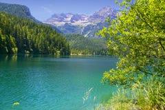Lac Tovel Trentino Alto Adige, Italie Images stock