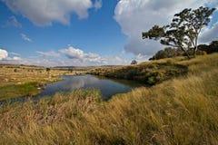 Lac tranquille dans Mpumalanga, Afrique du Sud Image libre de droits