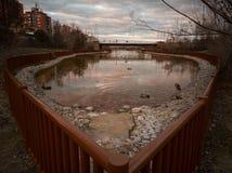 Lac urbain de parc Photographie stock